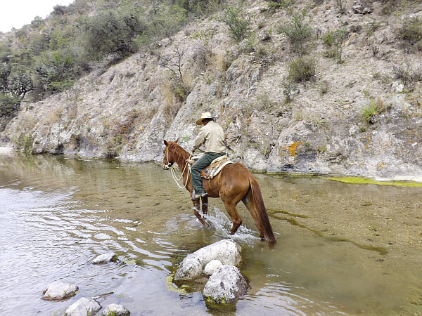 Coyote Canyon tours