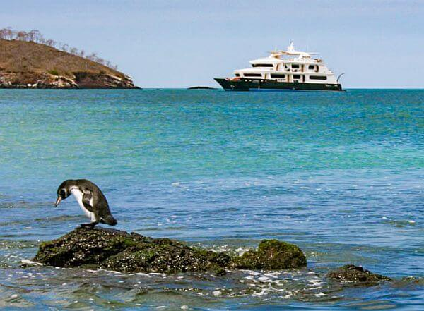 small ship luxury tour vs. Galapagos land tours
