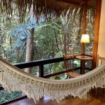 Anavilhanas jungle lodge in Brazil