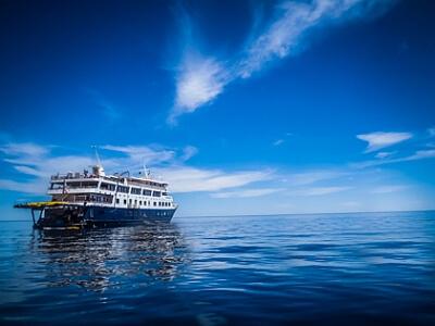 Sea of Cortez cruise