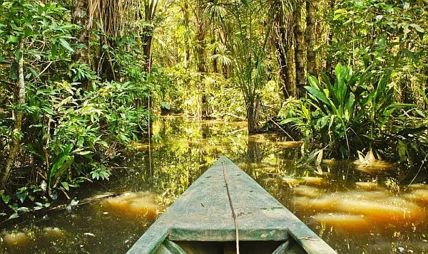 Amazon jungle trip