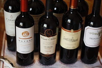 carmenere wine chile