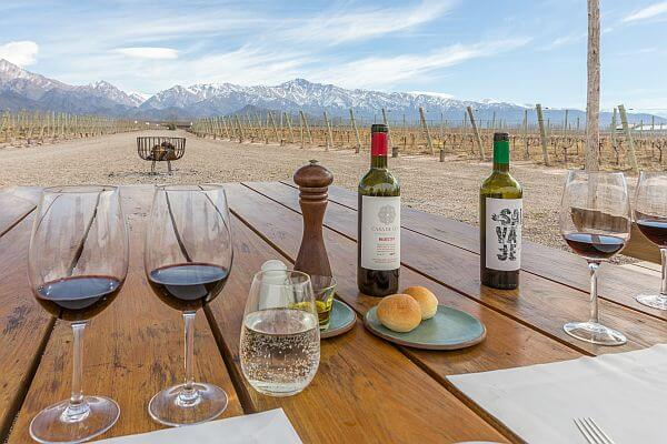 wine hotels Mendoza Argentina