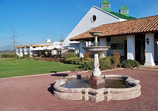 casa del bosque Chile - one of the world's best wineries
