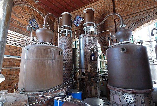 tequila stills Corralejo