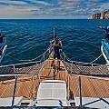 Galapagos cruise deck
