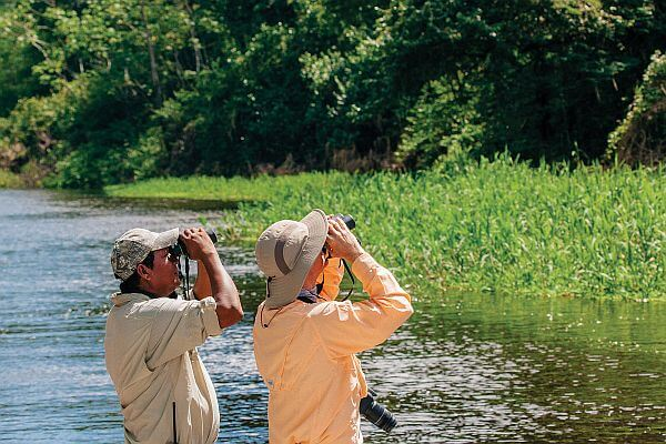 birdwatching on an Amazon river cruise excursion