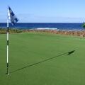 golf course Indura