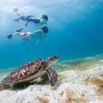 Galapagos Islands family vacation