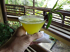 luxury lodge welcome drink