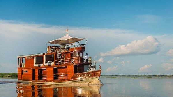 Cattleya Amazon ship