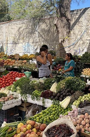 Oaxaca Spanish language learning vacation with visits to markets and galleries