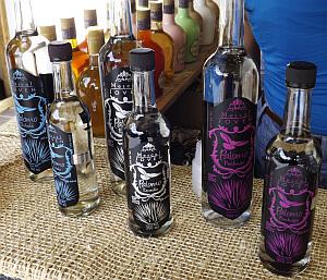 Paloma brand bottles