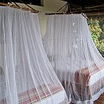 mosquito net for zika