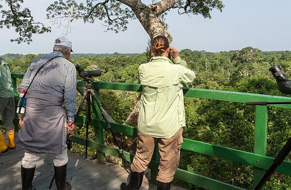 Napo ecolodge wildlife reserve birdwatching canopy