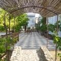 Narbona wine hotel