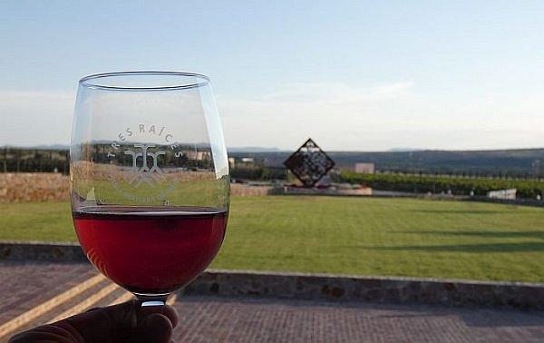 Tres Raices, one of several Mexican wineries near San Miguel de Allende