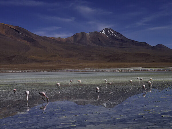 traveling overland in Bolivia