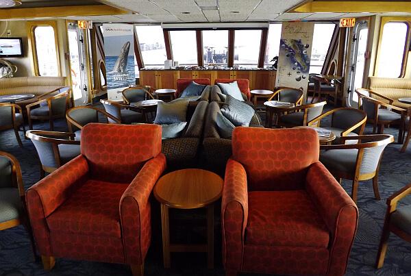 Endeavor Baja cruise