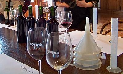undurraga vineyard Chile