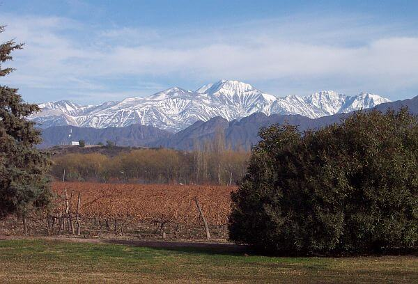 vineyard and Andes Mountains Argentina
