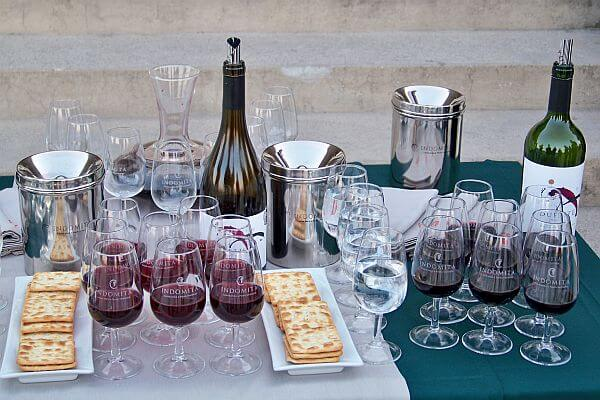wine tours south america