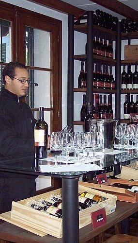 wine tasting in Mendoza, Argentina at Bodega Lagarde winery